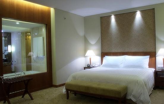 汕尾巴黎半岛酒店照片